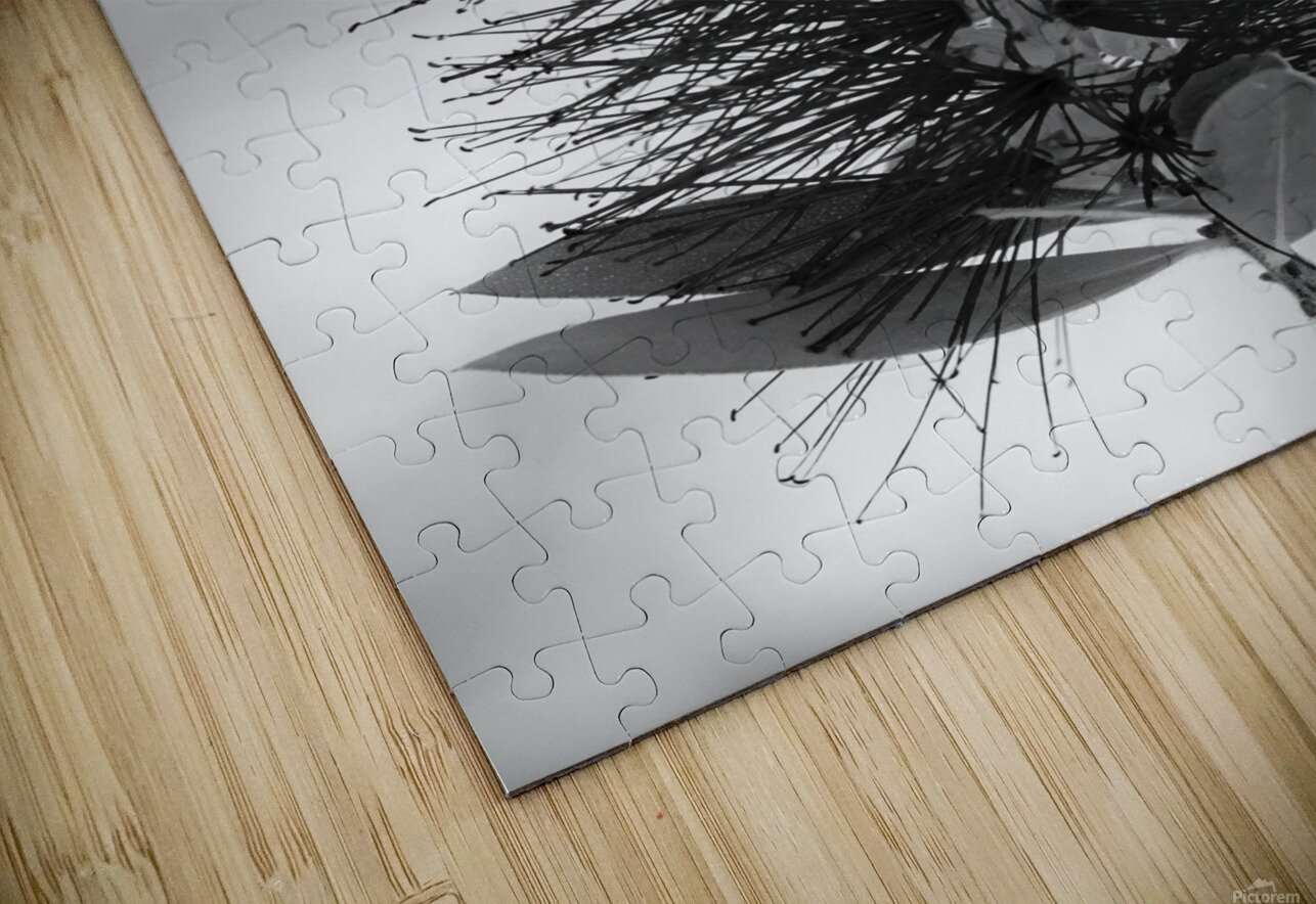 SNOWY DAY HD Sublimation Metal print