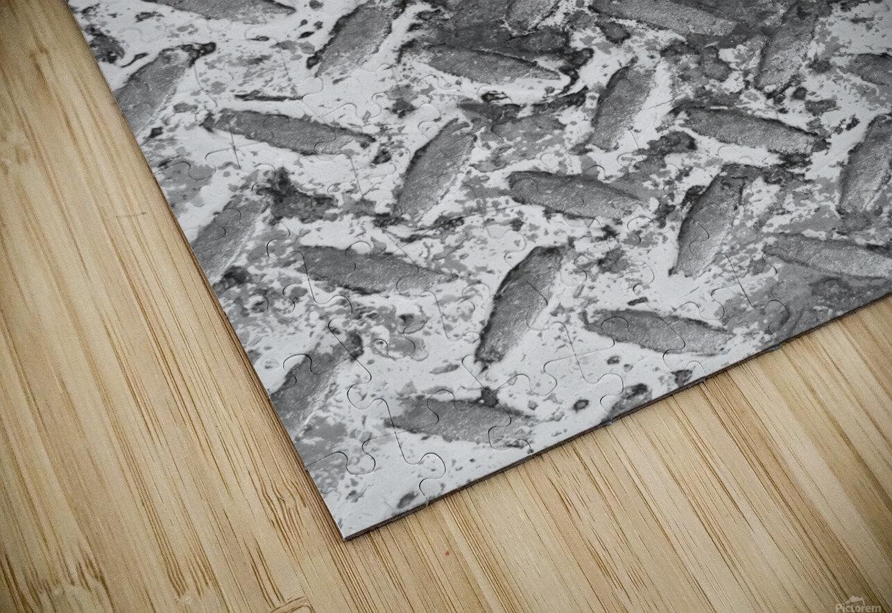 CURIOUS HD Sublimation Metal print