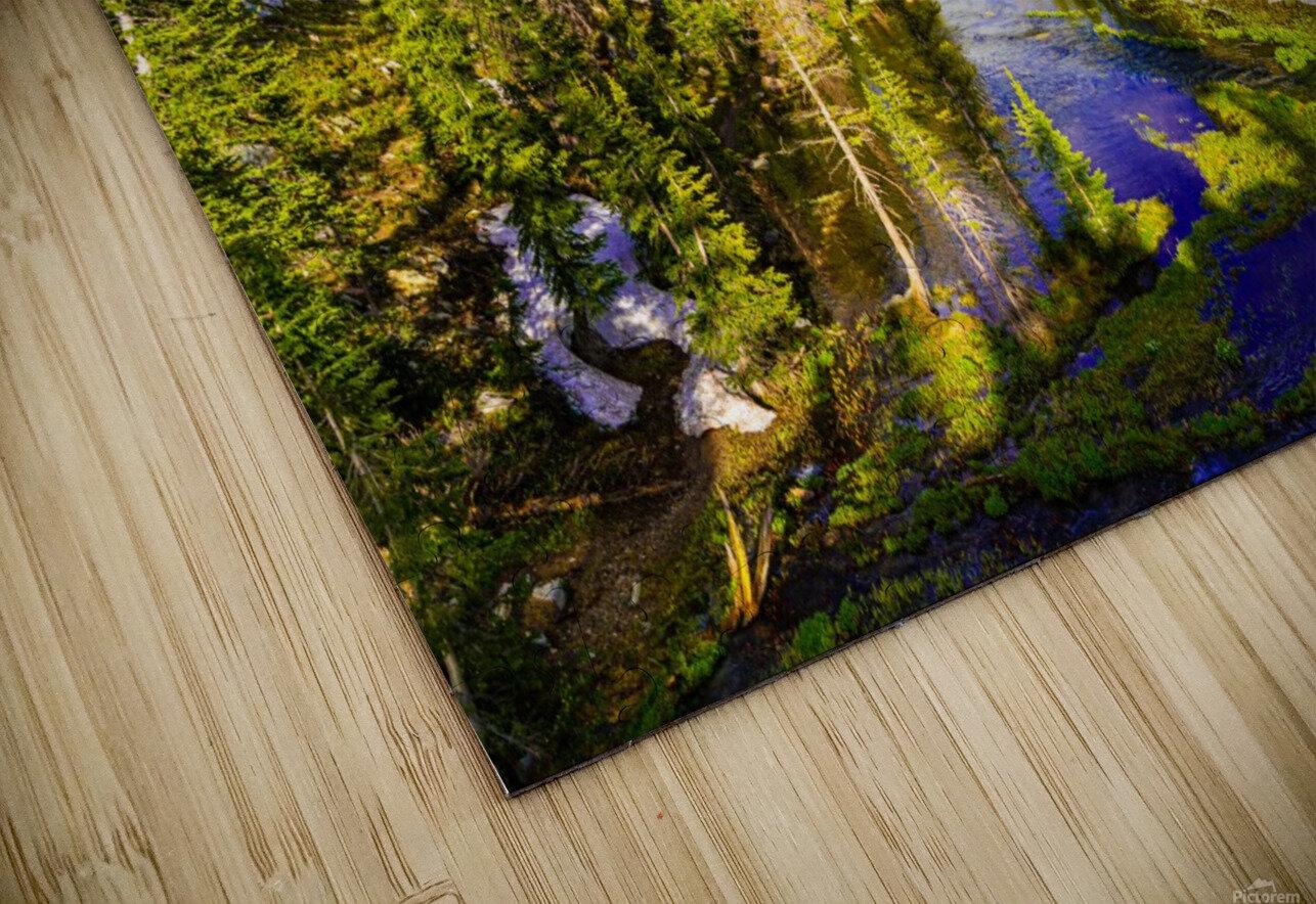 DSC00906 HD Sublimation Metal print