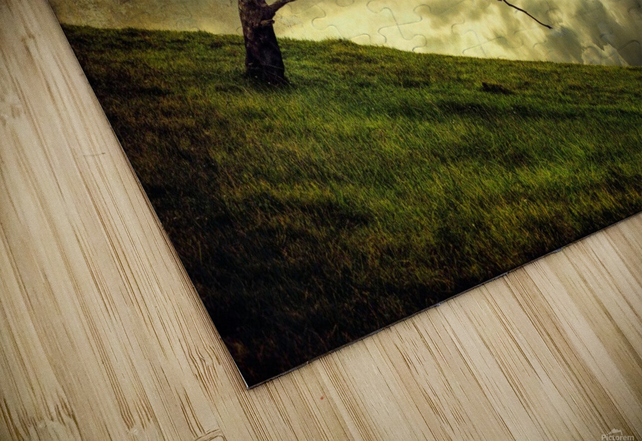 Winds of Change by Peter Elgar  HD Sublimation Metal print