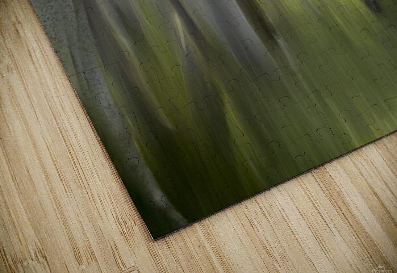 Impression by milan malovrh  HD Sublimation Metal print