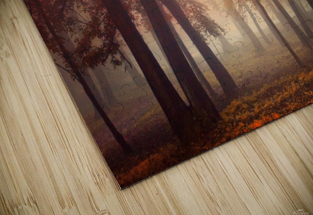 Feel HD Sublimation Metal print