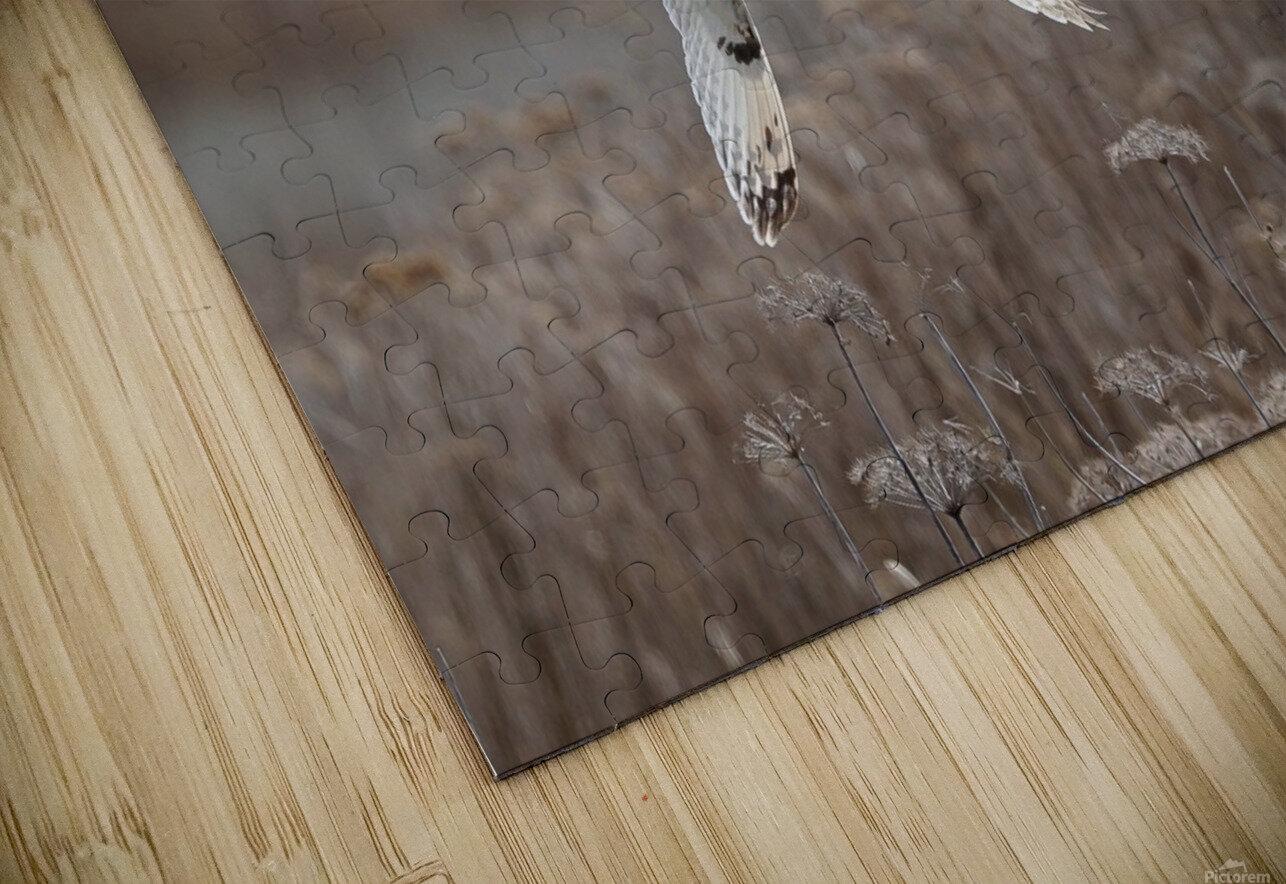 Wesley Allen Shaw 02353 HD Sublimation Metal print