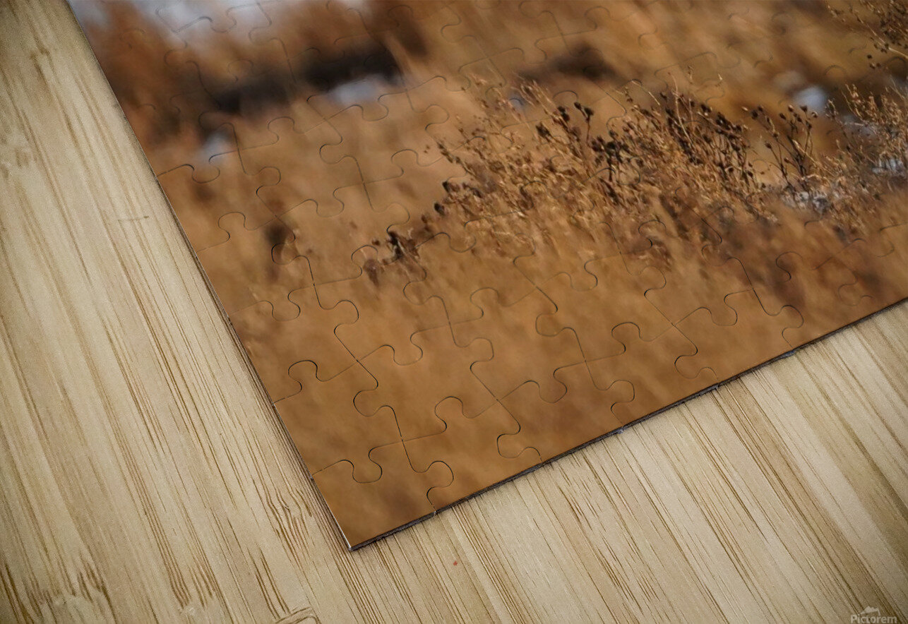 Wesley Allen Shaw 04091 HD Sublimation Metal print