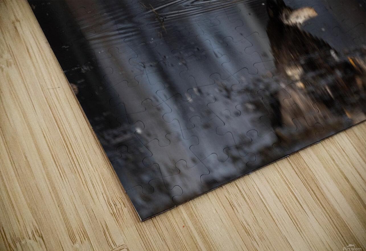 Wesley Allen Shaw 09085 HD Sublimation Metal print
