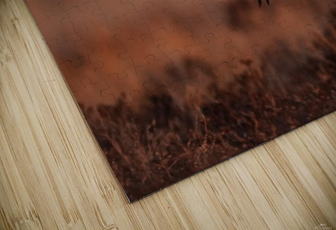 Wesley Allen Shaw 04277 HD Sublimation Metal print