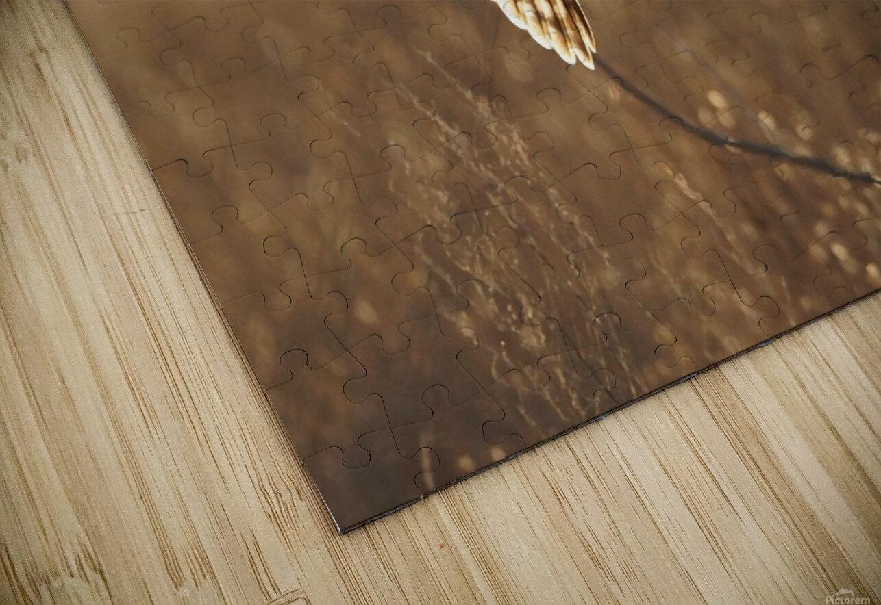 Wesley Allen Shaw 08859 HD Sublimation Metal print