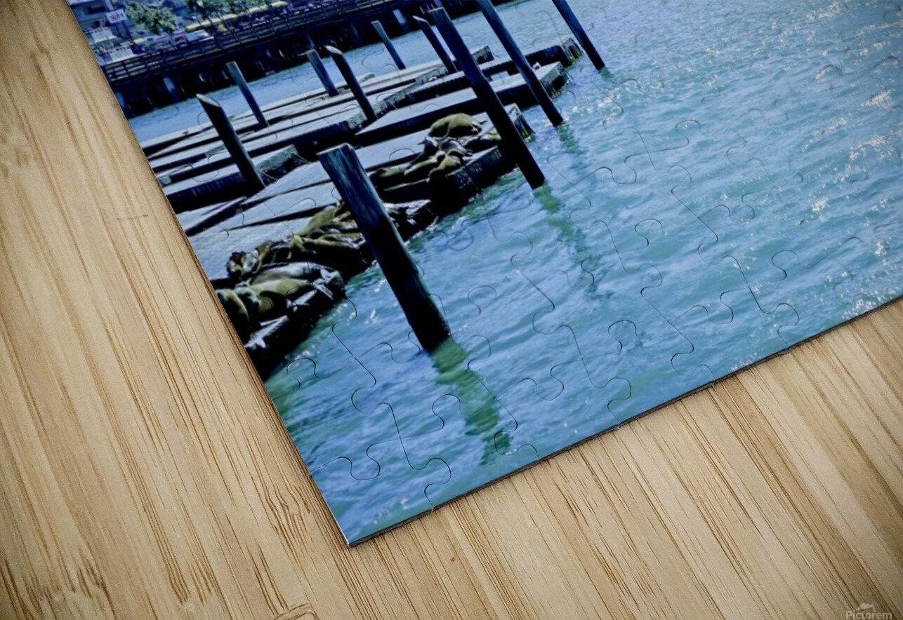 San Francisco Bay HD Sublimation Metal print