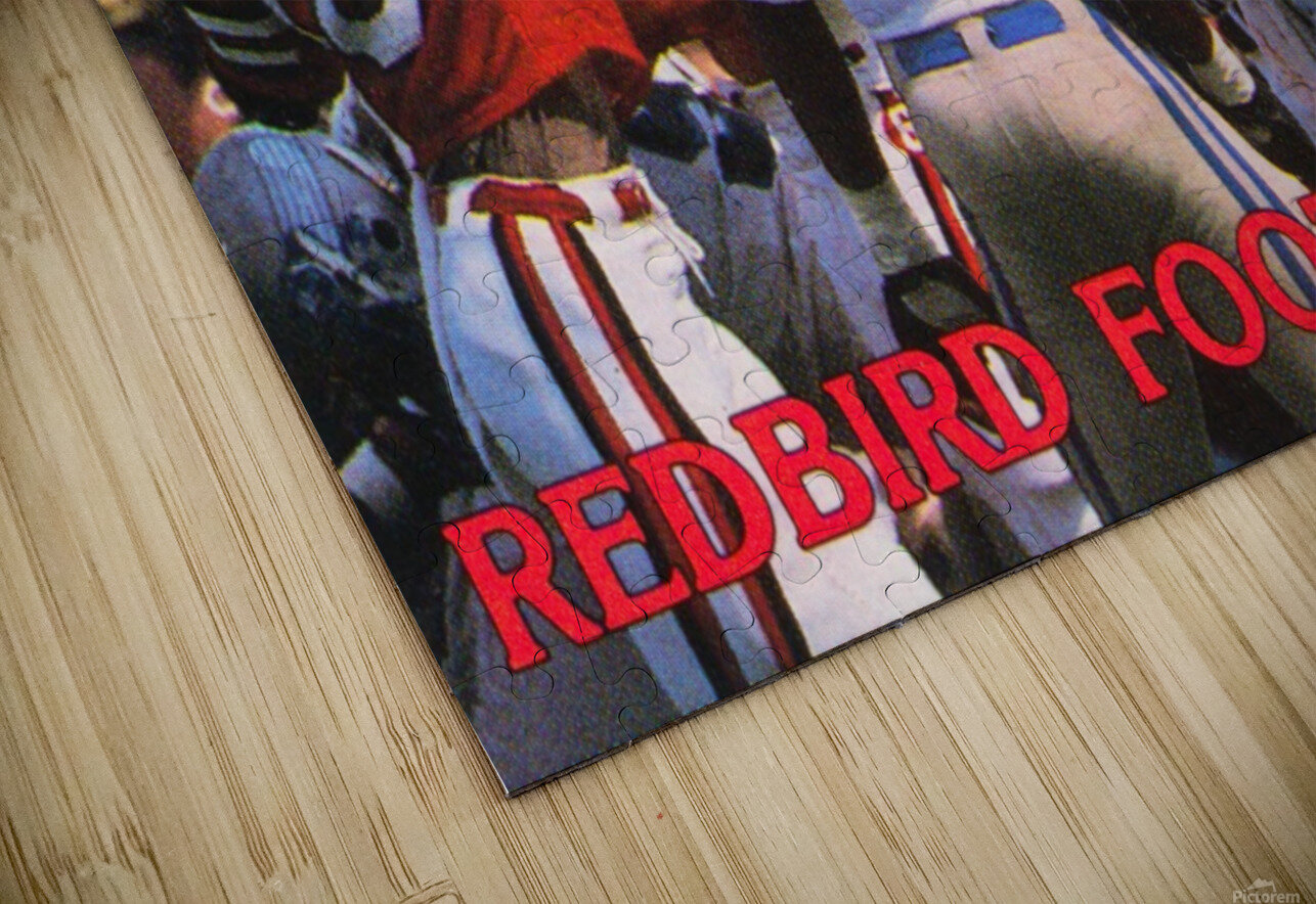 1985 Illinois State Redbirds Football Poster HD Sublimation Metal print