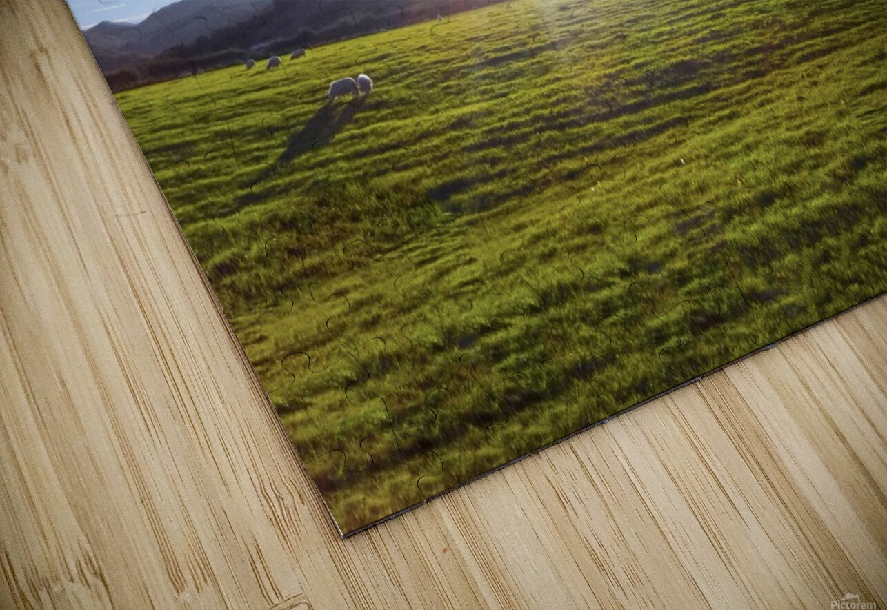 One Day in Wales 5 of 5 HD Sublimation Metal print