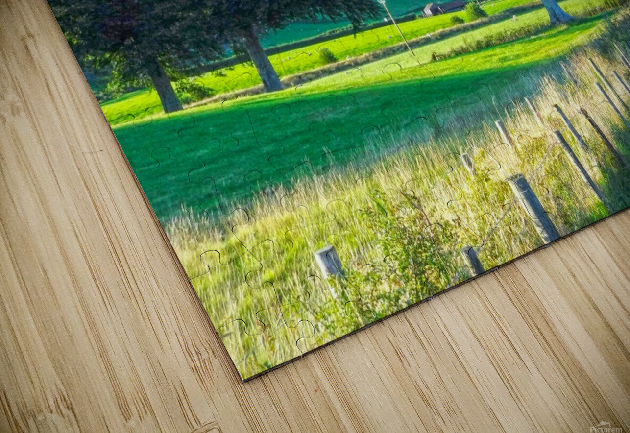 One Day in Wales 1 of 5 HD Sublimation Metal print