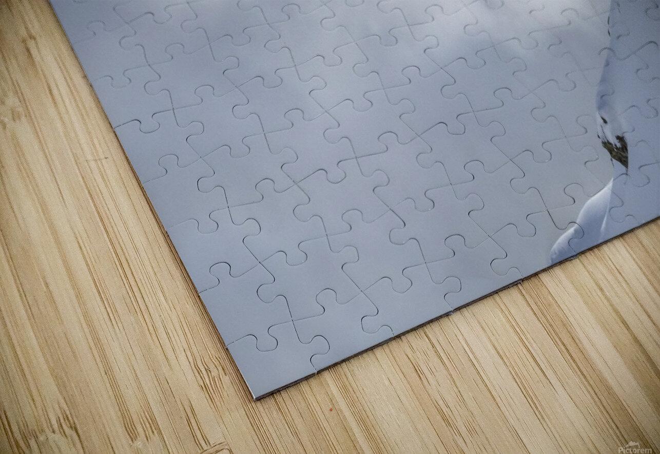 Lincoln Loop HD Sublimation Metal print