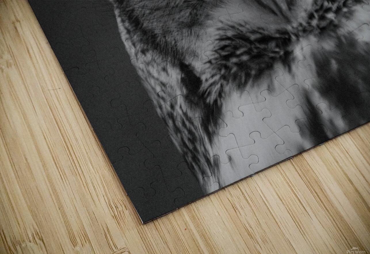 20181021 DSC 0247  2  1 2 HD Sublimation Metal print