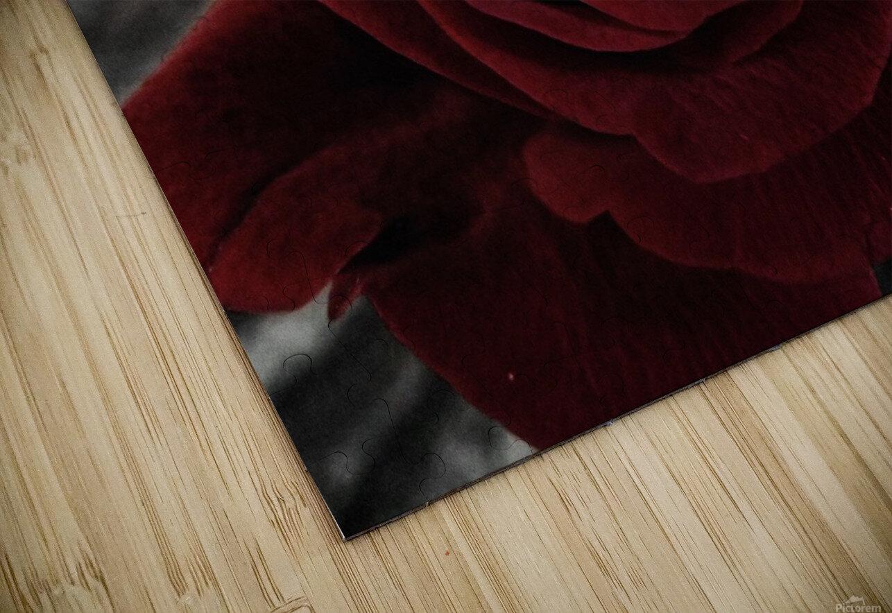 20181209 IMG 2803 HD Sublimation Metal print
