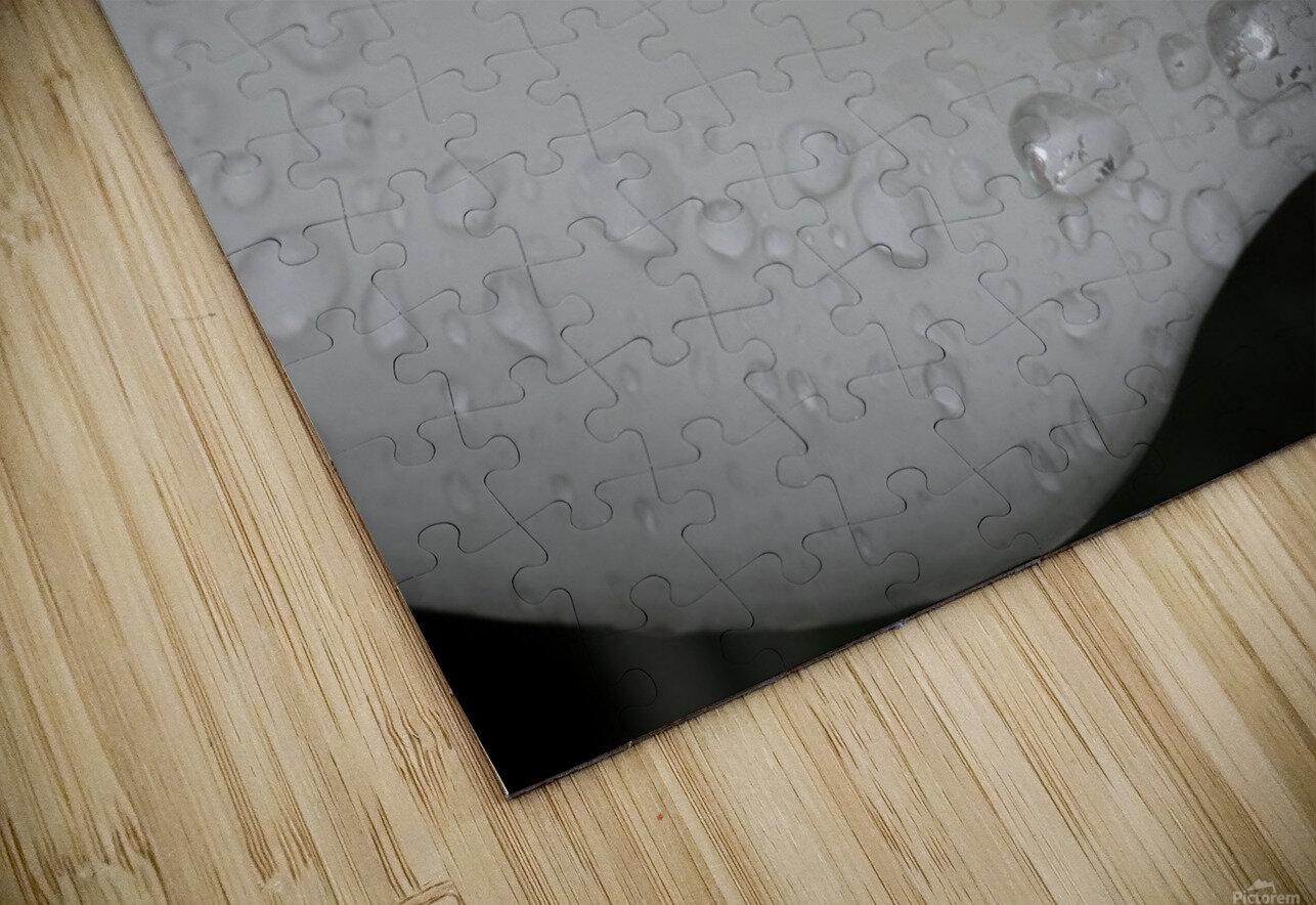 20200314 DSC 0071 HD Sublimation Metal print