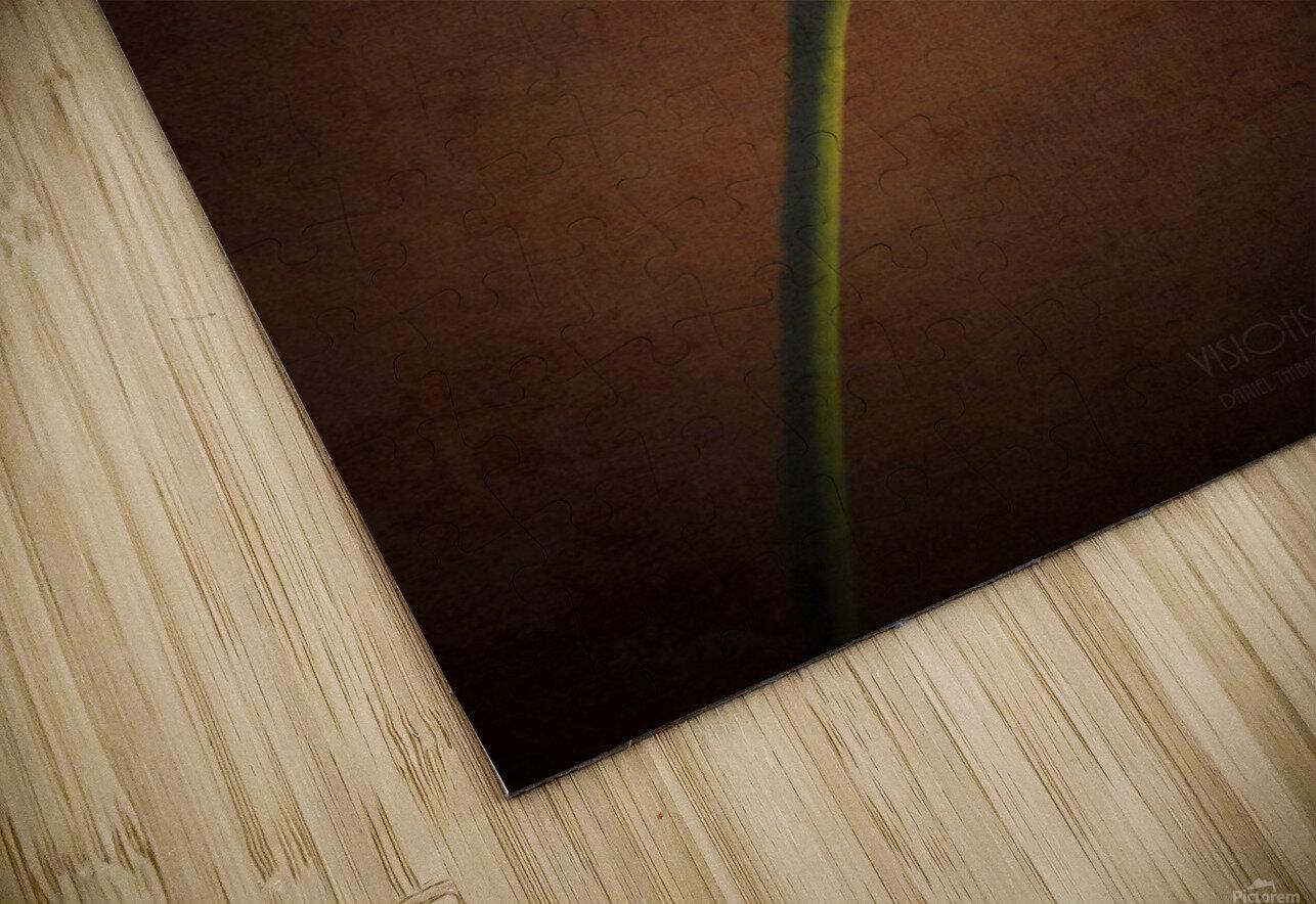 Etude Zen 7b HD Sublimation Metal print