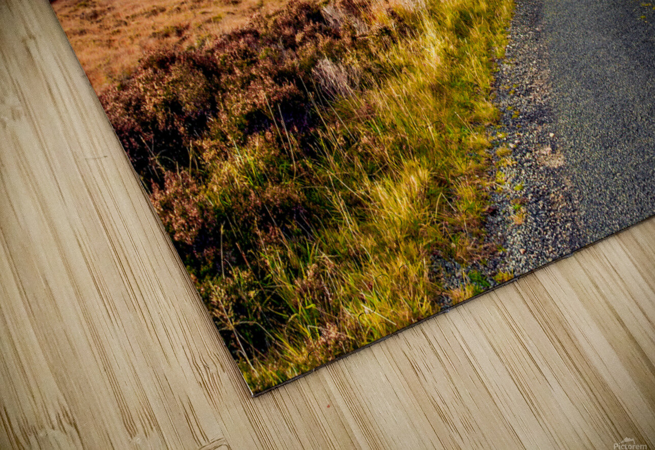 Donegal 11 HD Sublimation Metal print