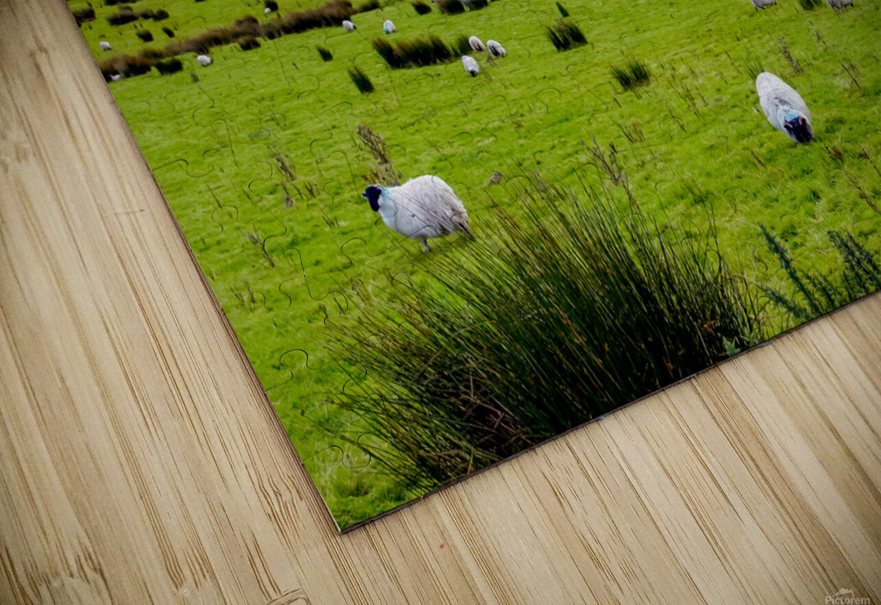 Donegal 10 HD Sublimation Metal print