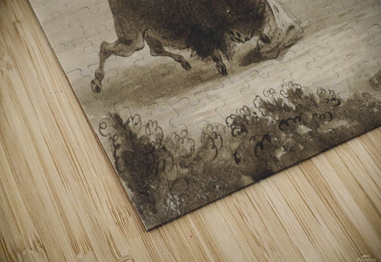 Hunters Escaping from a Wounded Buffalo, While He Tears Their Clothes to Pieces HD Sublimation Metal print