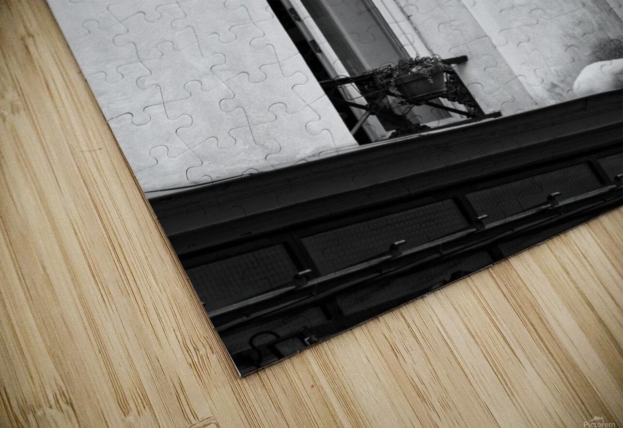 Paris cat Impression de sublimation métal HD