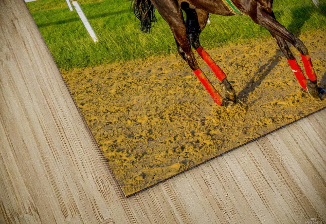 Racehorse01 HD Sublimation Metal print