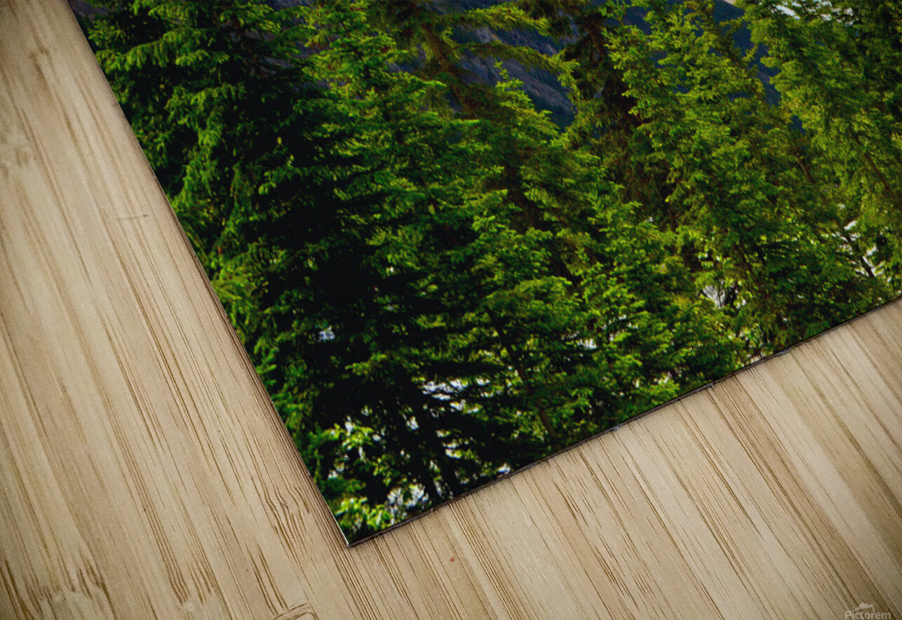 Perspective Approves HD Sublimation Metal print