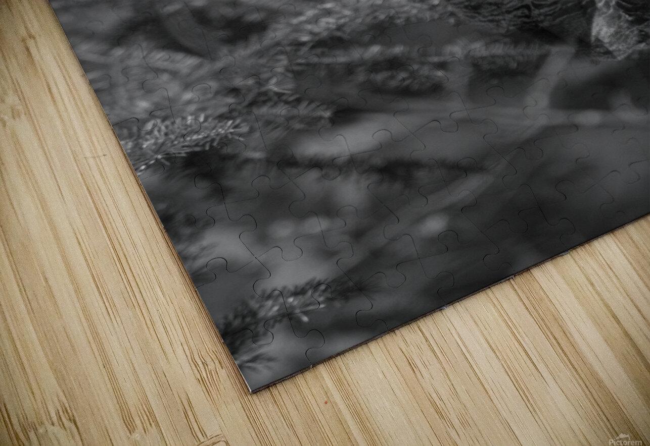 Pounce HD Sublimation Metal print