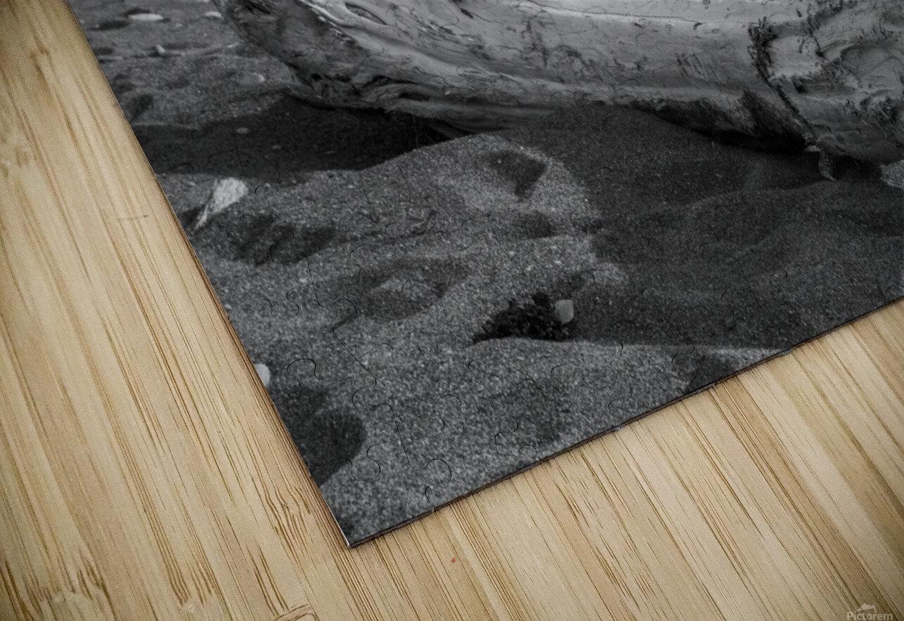 La Presqu'ile in black and white HD Sublimation Metal print