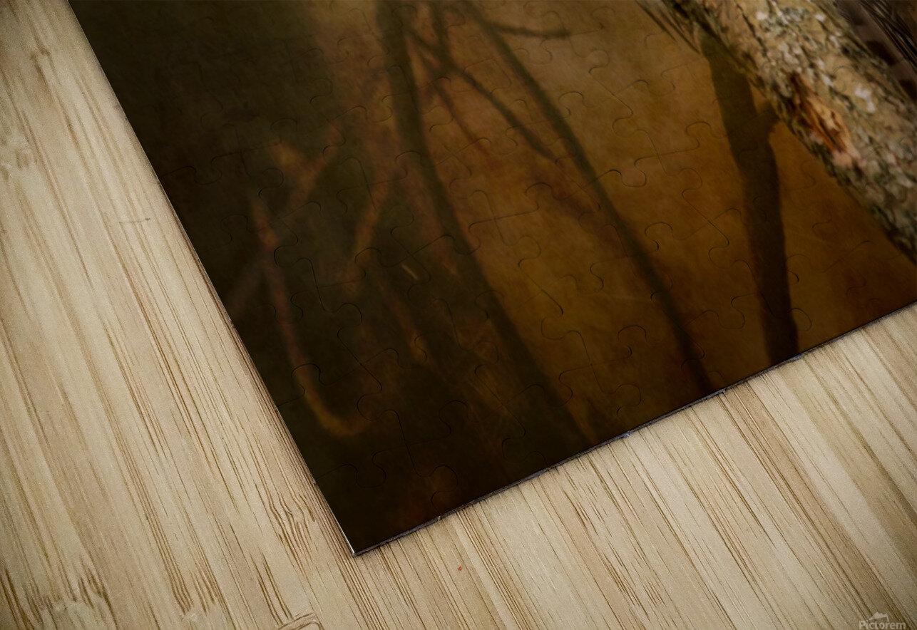 I See You HD Sublimation Metal print