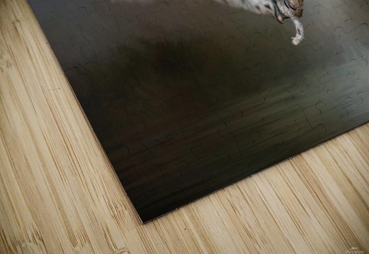 Mr Downy HD Sublimation Metal print