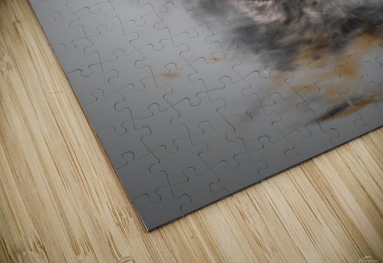 Chien HD Sublimation Metal print
