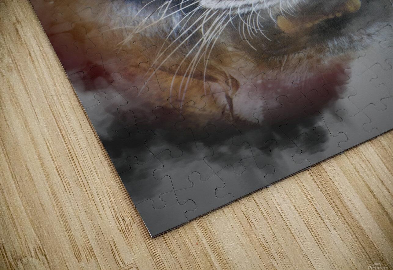 Tigre HD Sublimation Metal print
