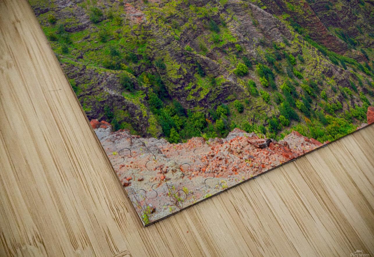 Waimea Canyon Area in the Puu Ka Pele Forest Reserve on the Island of Kauai Hawaii HD Sublimation Metal print
