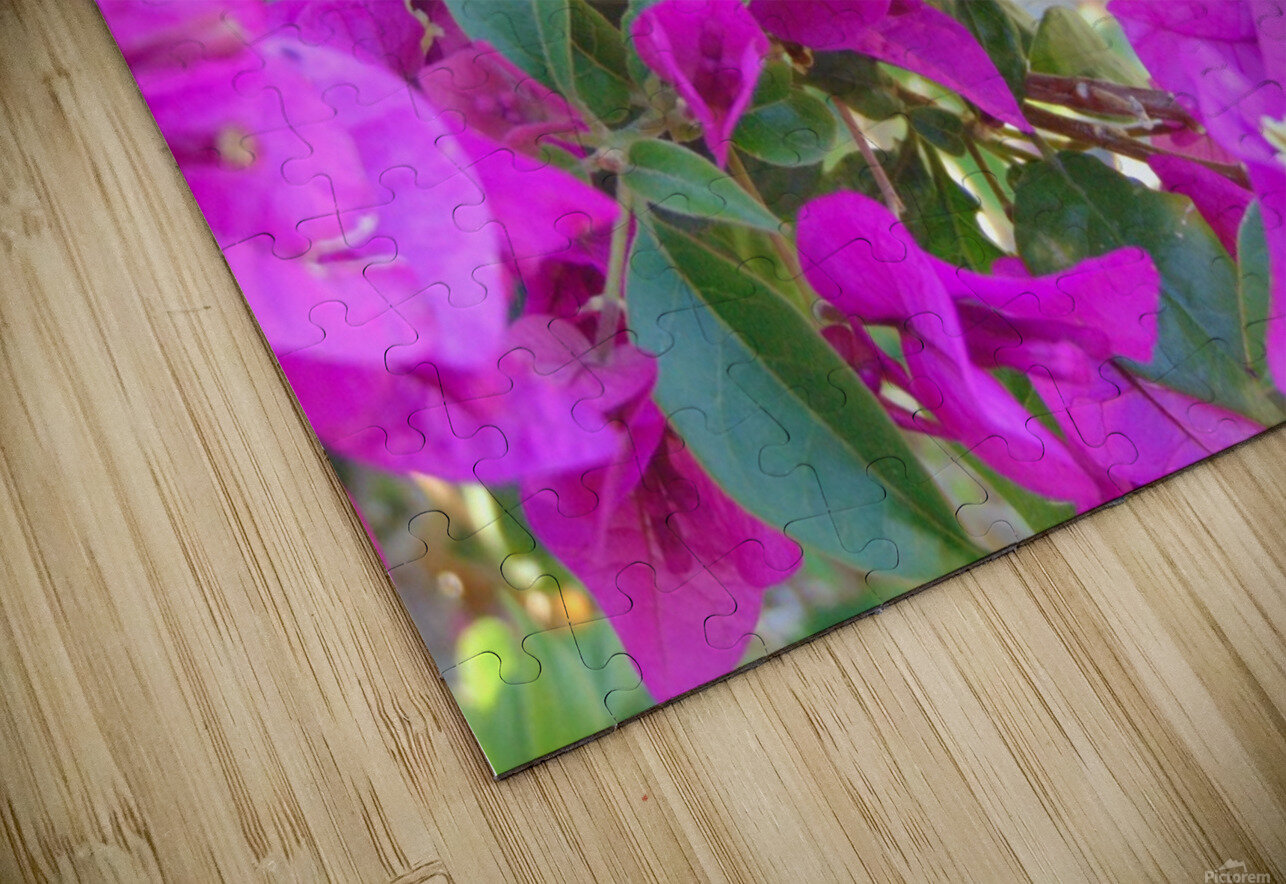 Purple Fusion HD Sublimation Metal print