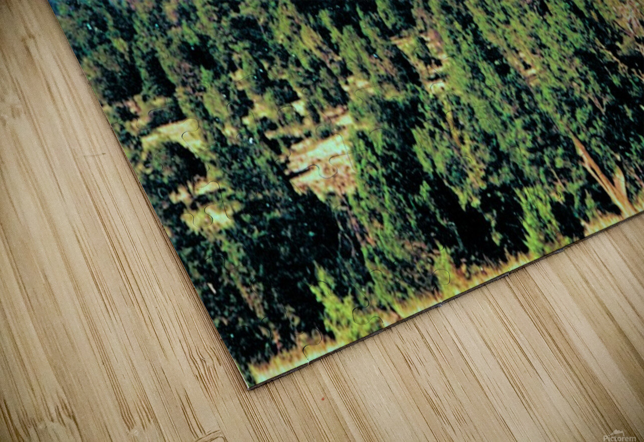 Something Different HD Sublimation Metal print