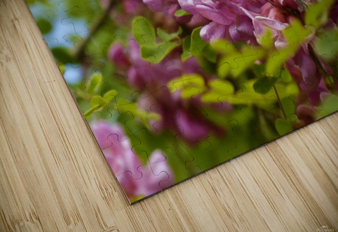 Rose Acacia  HD Sublimation Metal print