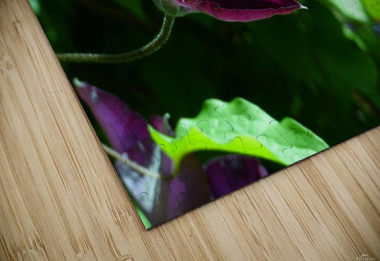 Divine Vine HD Sublimation Metal print