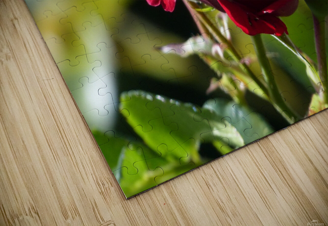 Sterling HD Sublimation Metal print