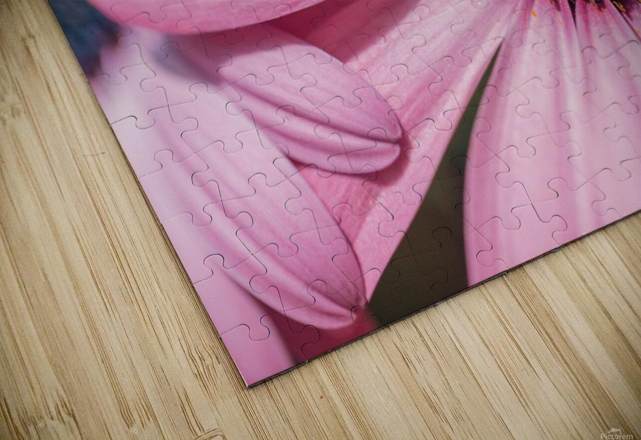 Gerbera flower background HD Sublimation Metal print