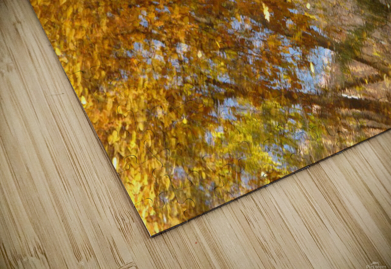 Autumn Reflections I HD Sublimation Metal print