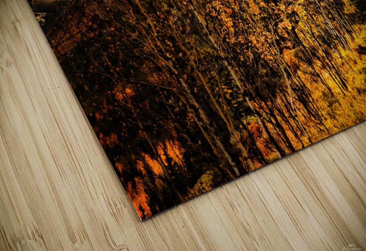 Rocky Mountain Way HD Sublimation Metal print
