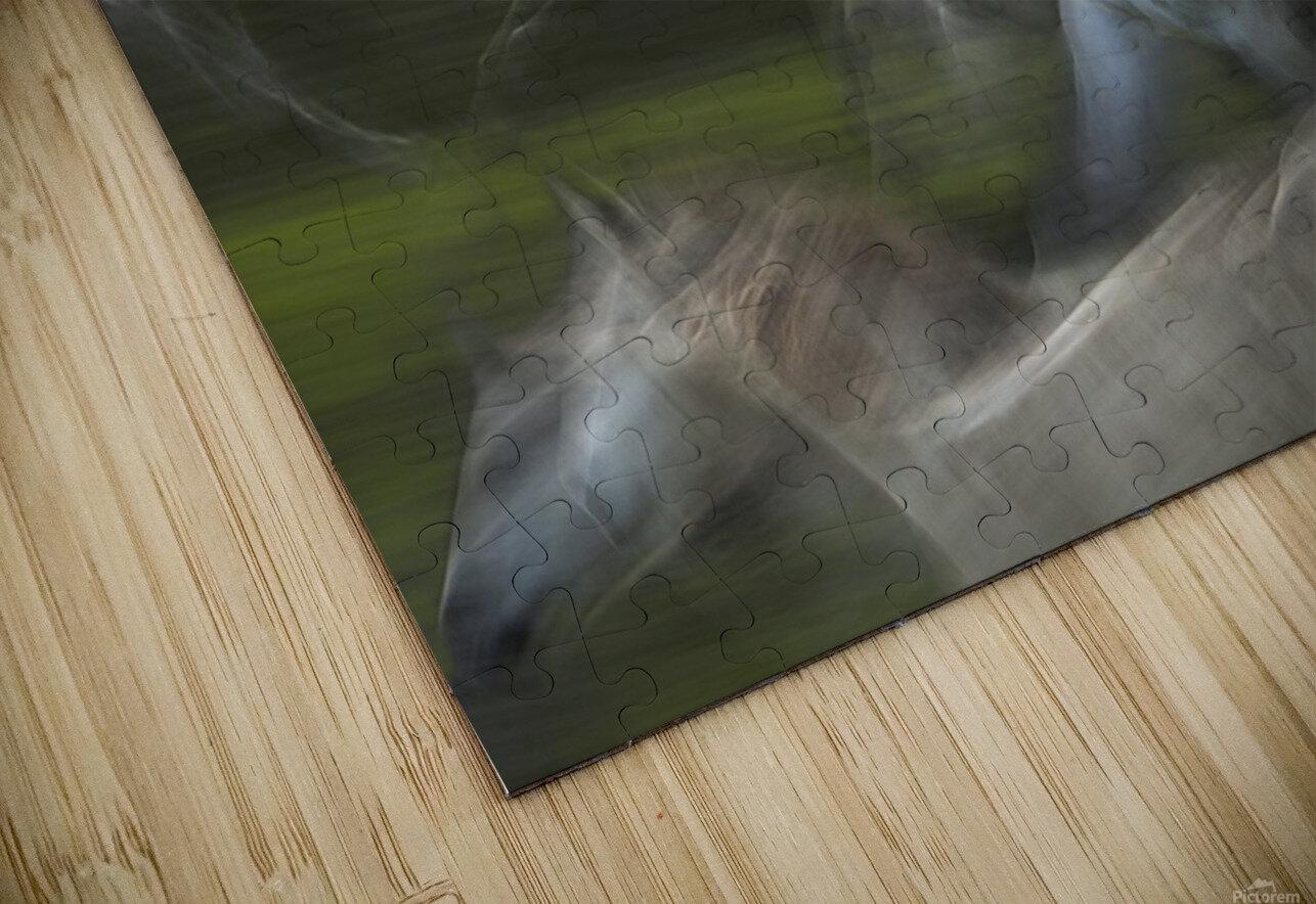 Stampedo HD Sublimation Metal print