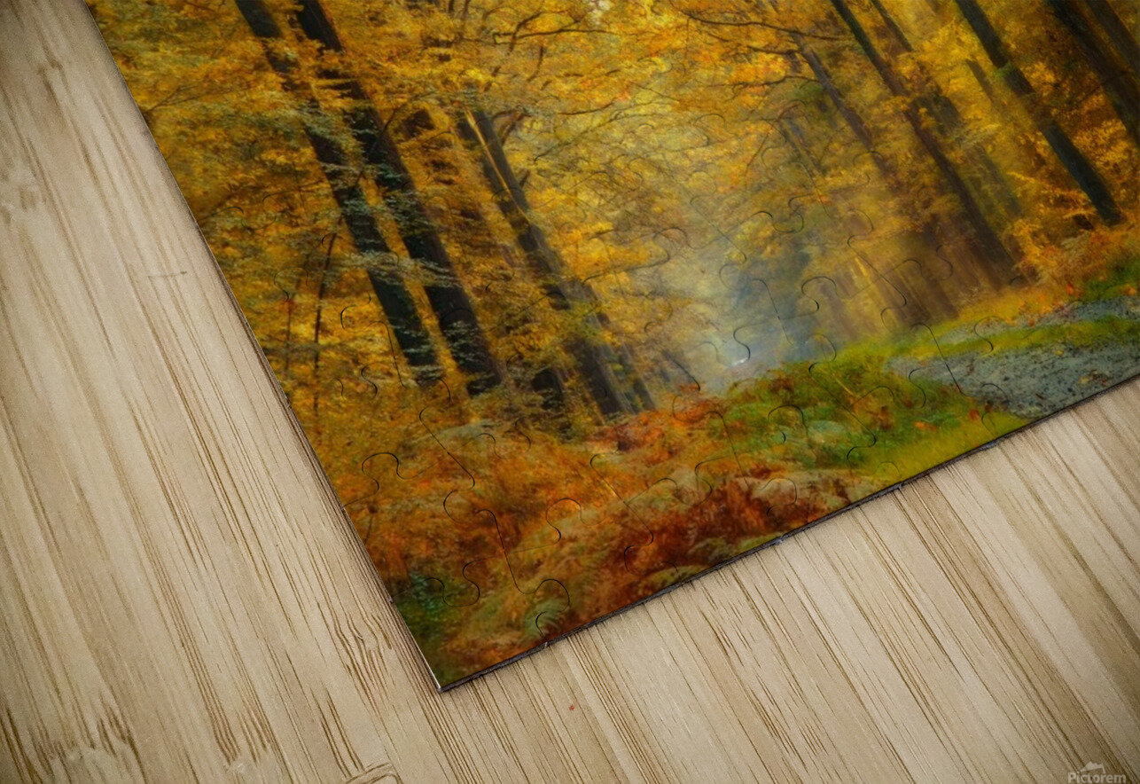 Enchanted Forest HD Sublimation Metal print