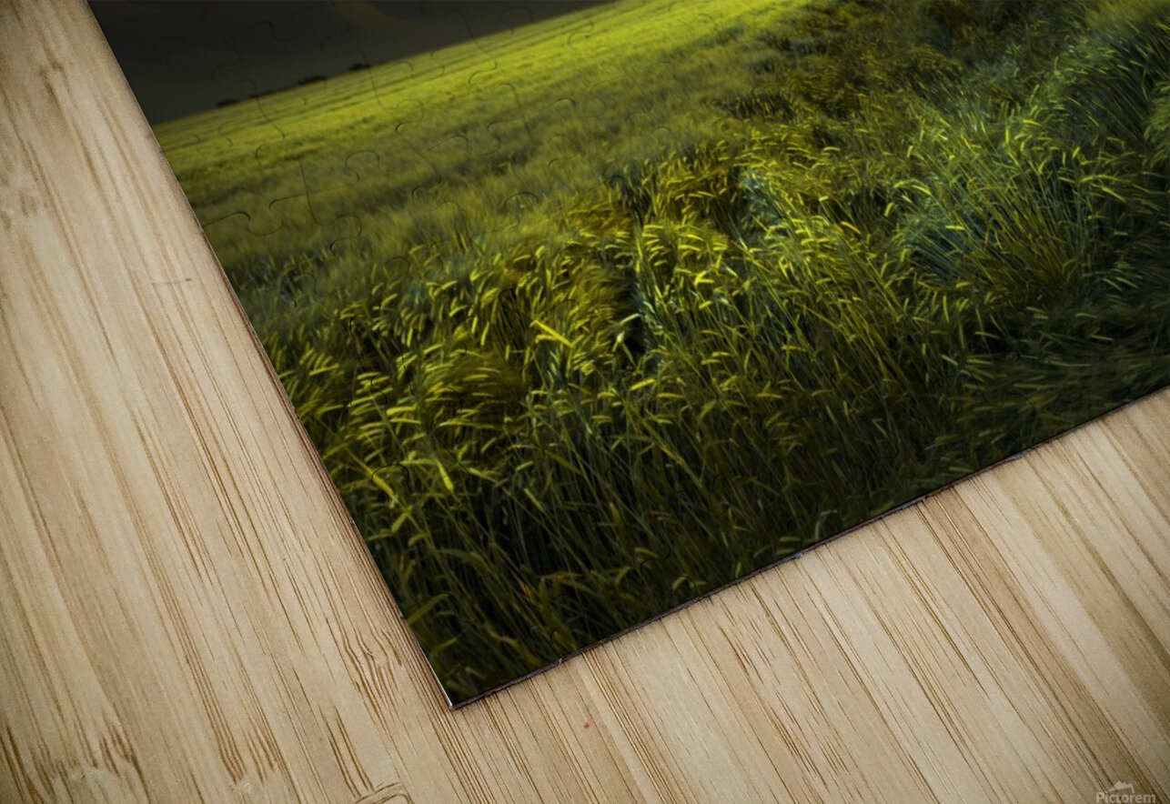 Electrically in Summer HD Sublimation Metal print