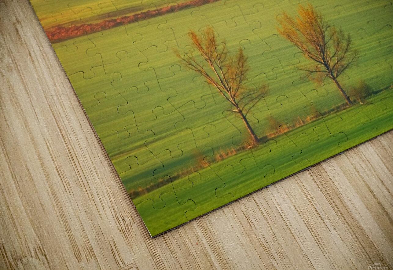 Fields HD Sublimation Metal print