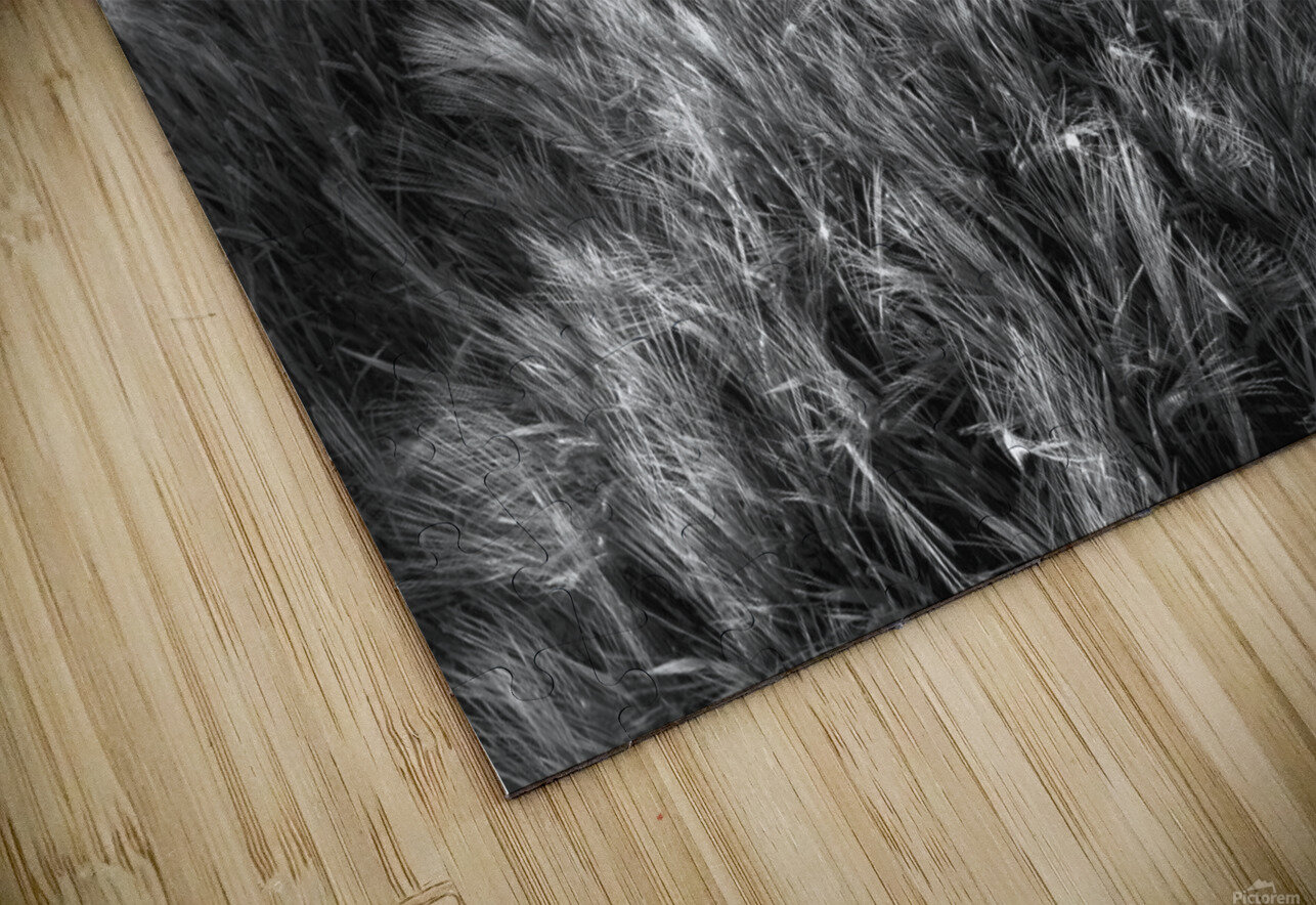 Alone HD Sublimation Metal print