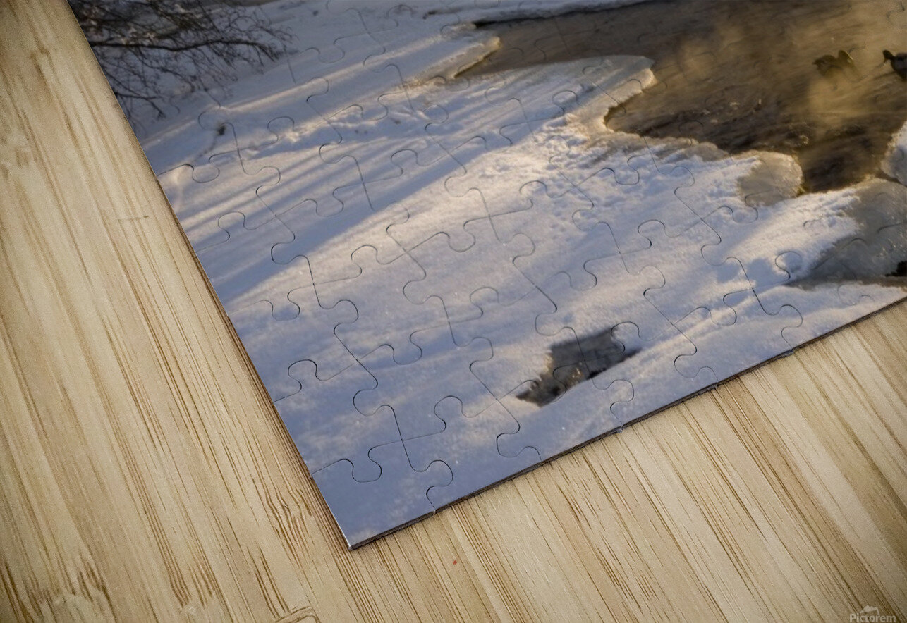 The first light HD Sublimation Metal print