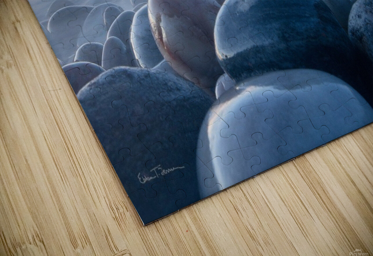 An ocean of time HD Sublimation Metal print