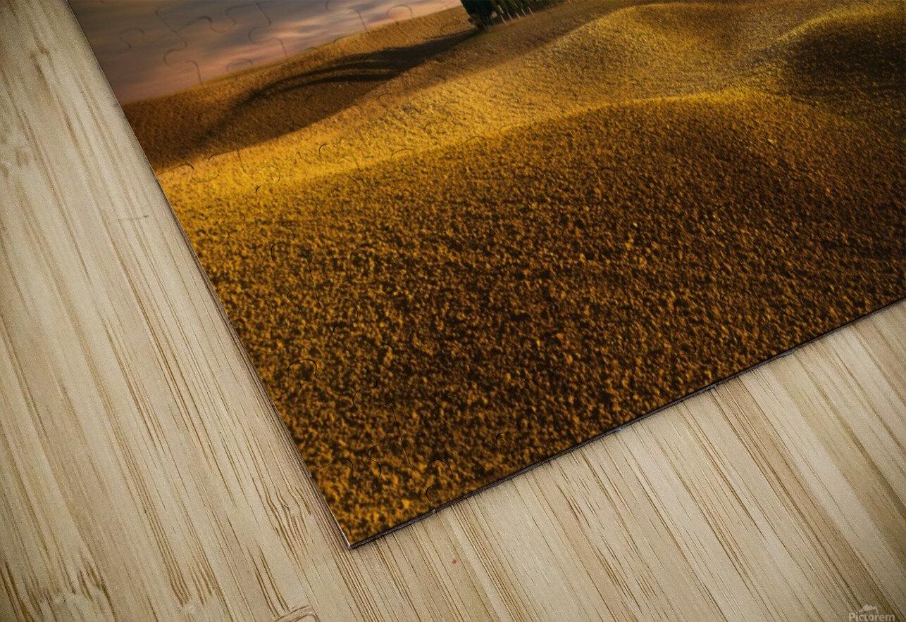 Cypresses... HD Sublimation Metal print