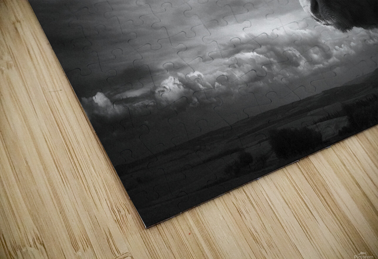 the Highlands HD Sublimation Metal print
